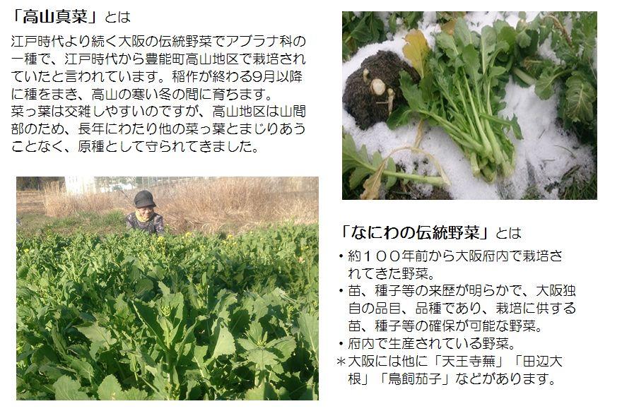 2019takayamamana3.JPG