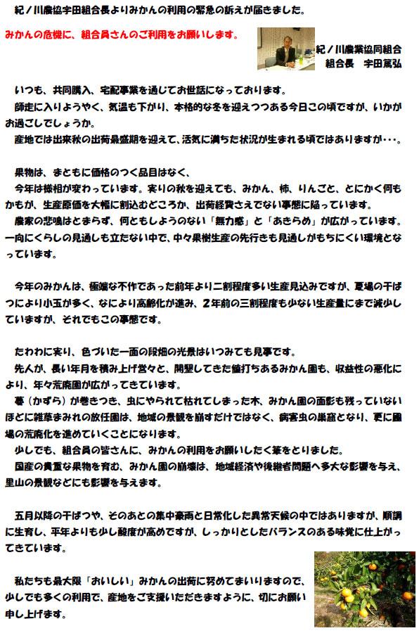 091208kinokawa_s.jpg