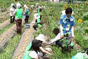 120803_volunteer_03.jpg