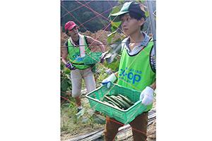 130809_volunteer_04.jpg