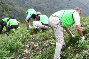 130913_volunteer_05.jpg