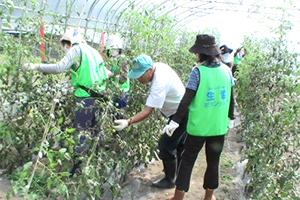130920_volunteer_05.jpg