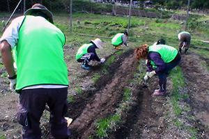 131011_volunteer_03.jpg