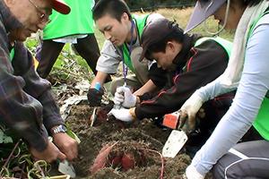 131011_volunteer_07.jpg