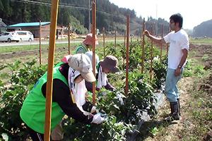 131011_volunteer_08.jpg