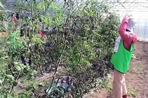 131011_volunteer_09.jpg