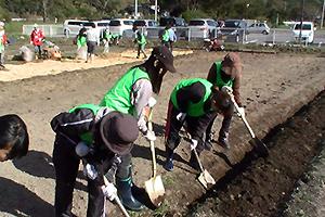 131101_volunteer_02.jpg