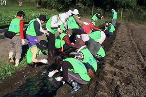 131101_volunteer_07.jpg