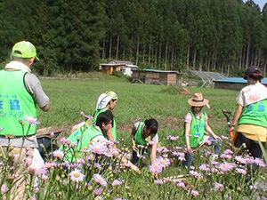 140730_volunteer_03.jpg