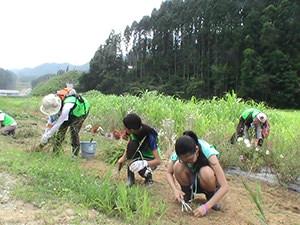 140730_volunteer_05.jpg
