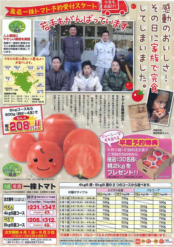 tomato1003-01.jpg